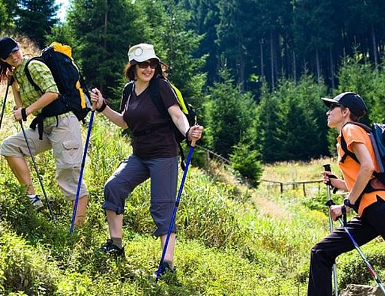 Nordic Walking Zentrum Altenau