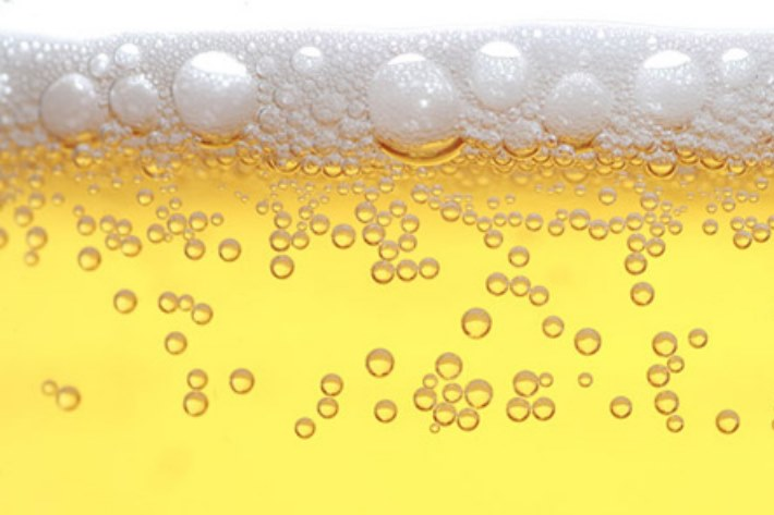 Bier Harz
