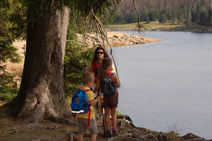 Oberharzer Wasserwirtschaft UNESCO Weltkulturerbe