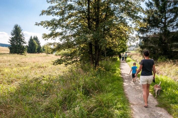 Buntenbock Oberharz Harz