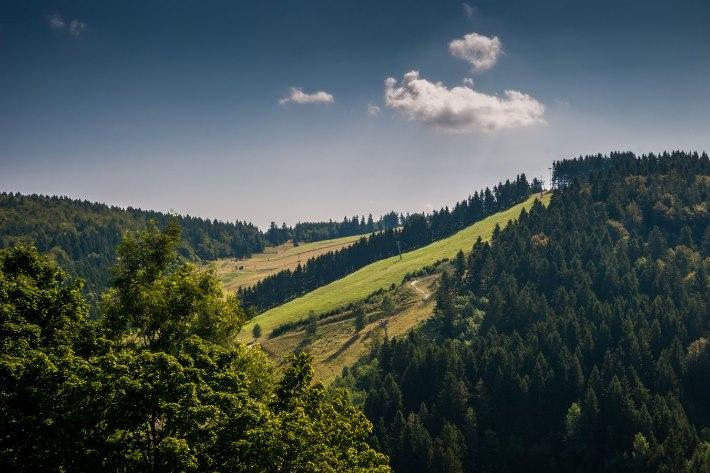 Sankt Andreasberg Sommerrodelbahn