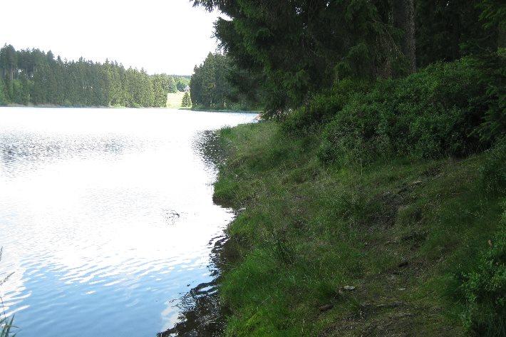 Angeln im Harz