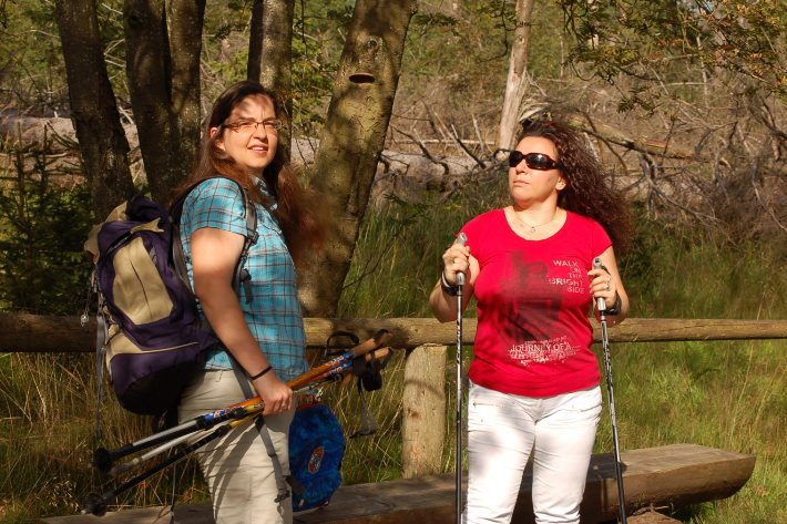 Nordic Walking im Harz
