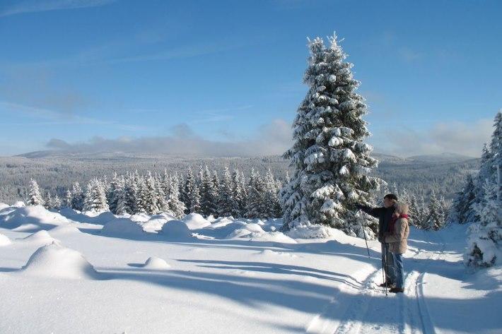 Winter Wandern Harz