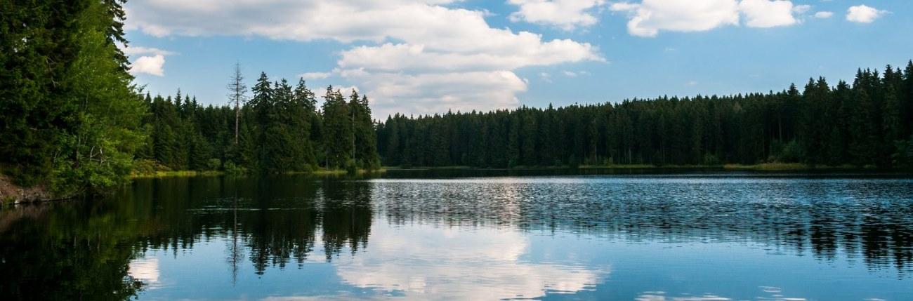 Buntenbock Harz Oberharz