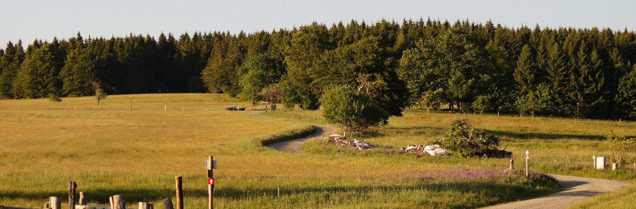 Geologischer Wanderweg Harz