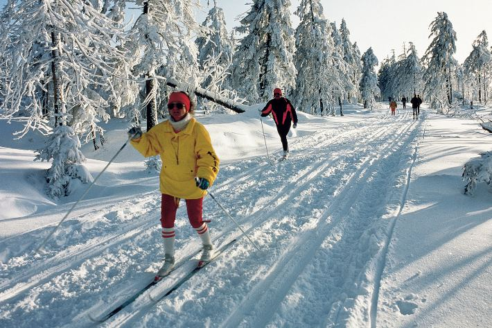 Langlauf Wintersport Harz