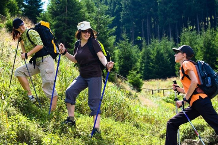 Nordic Walking Harz